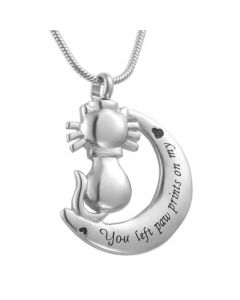 Cat Moon - Stainless Steel Cremation Ashes Jewellery Pendant